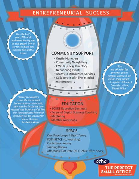 Entrepreneurial Success Infographic